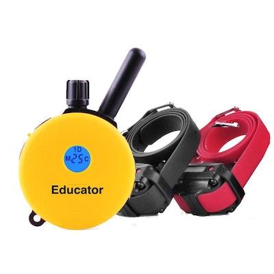 ET-402 E-Collar Remote Trainer