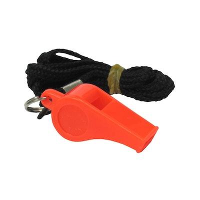 Training Whistle and Lanyard