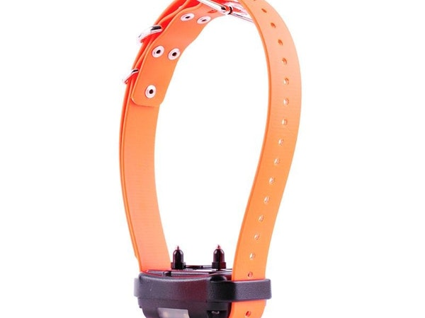 Extra & Replacement Collars